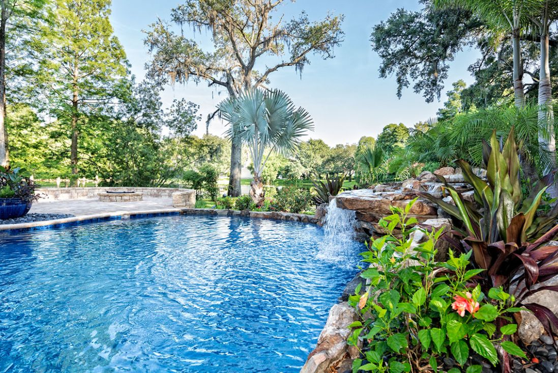Five plants to turn your pool into a tropical paradise | Better ..