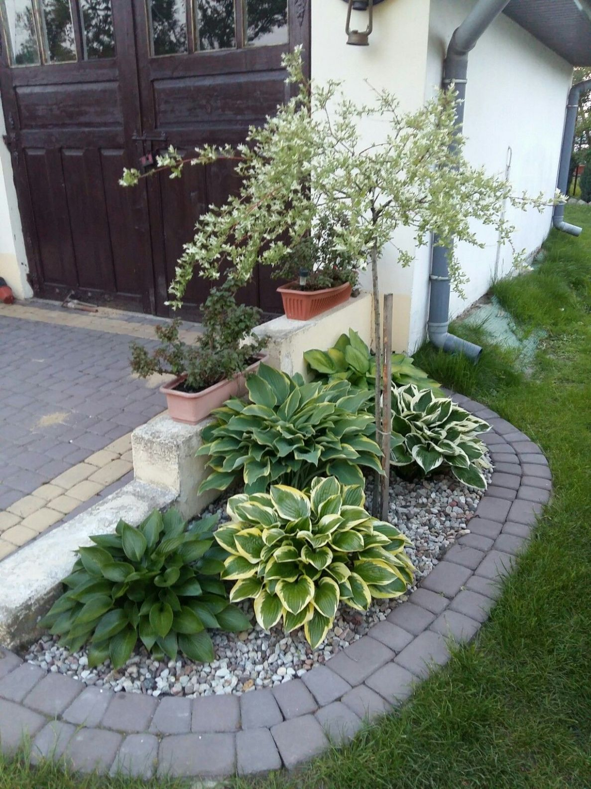 Front garden idea | Small front yard landscaping, Small yard ..