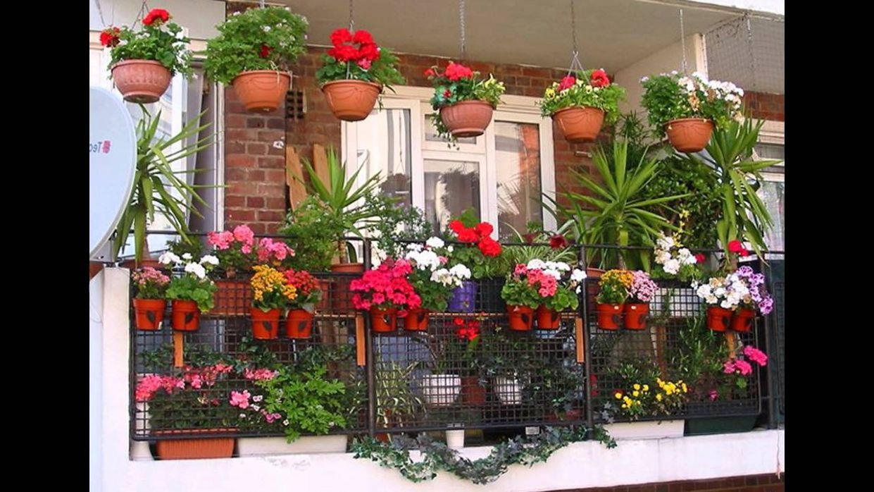 [Garden Ideas] Balcony plant pots ideas - garden ideas hanging baskets