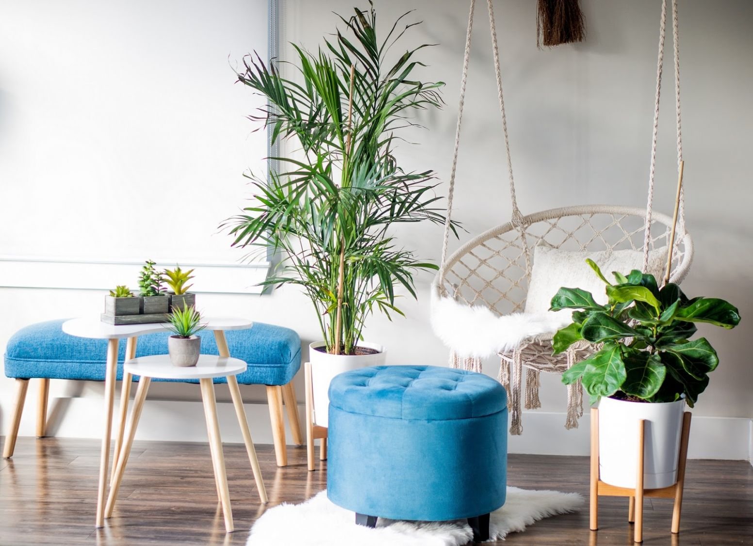 Get Inspired by Plant Home Decor   Oh to Be a Muse - home decor with plants