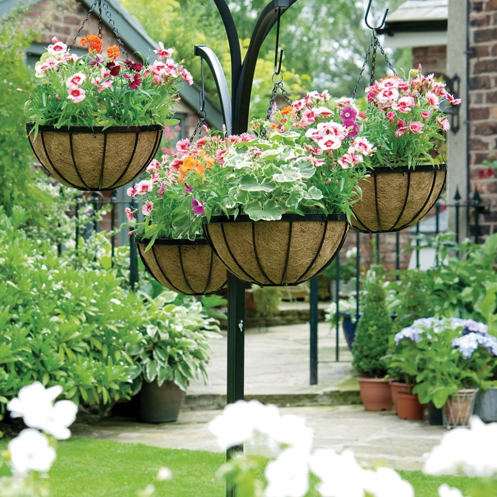 Hanging Flower Baskets: The Only Guide You'll Need