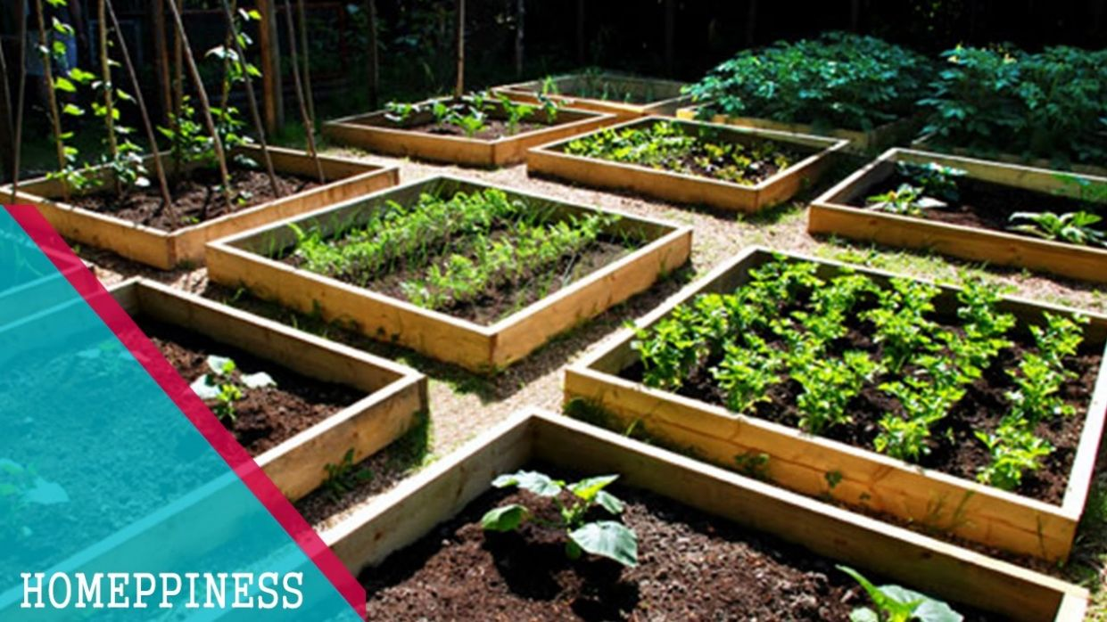 HAVE YOU LOOK THIS? 12+ Cheap Vegetable Garden Ideas that Will Save Your  Money - garden ideas on the cheap