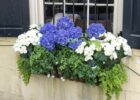 How To Design Window Box Flower Combinations (Inspired By ...