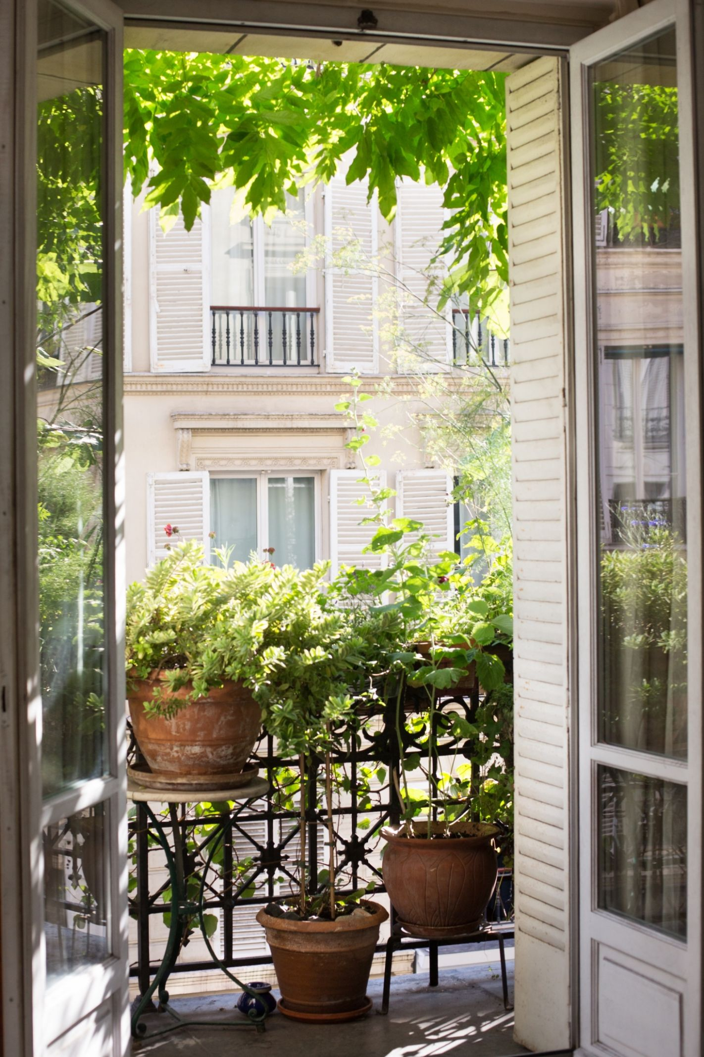 How to Garden Like a Frenchwoman: 12 Ideas to Steal from a Paris ..