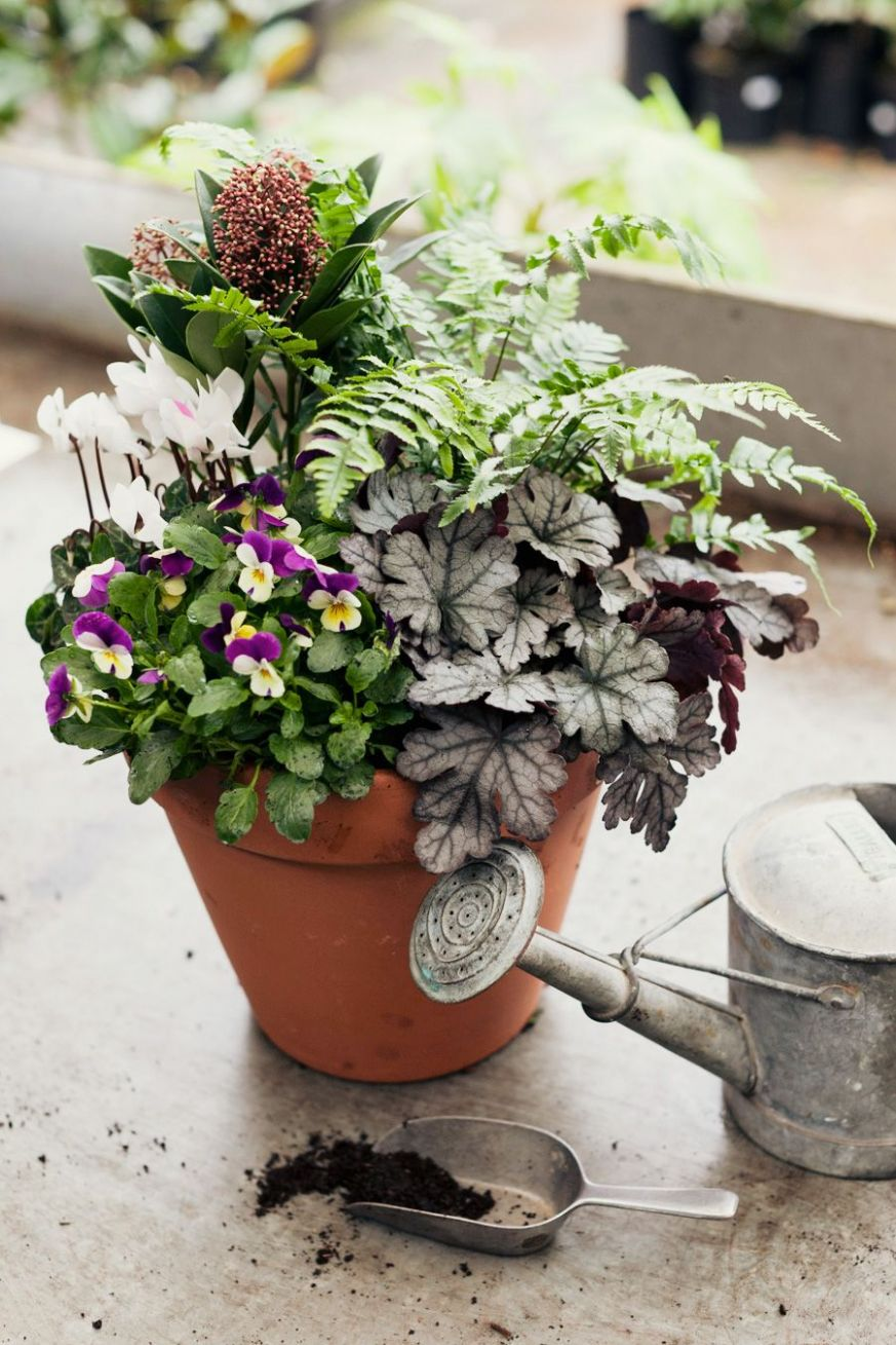 How to make a winter hardy container for the garden. | Winter ...