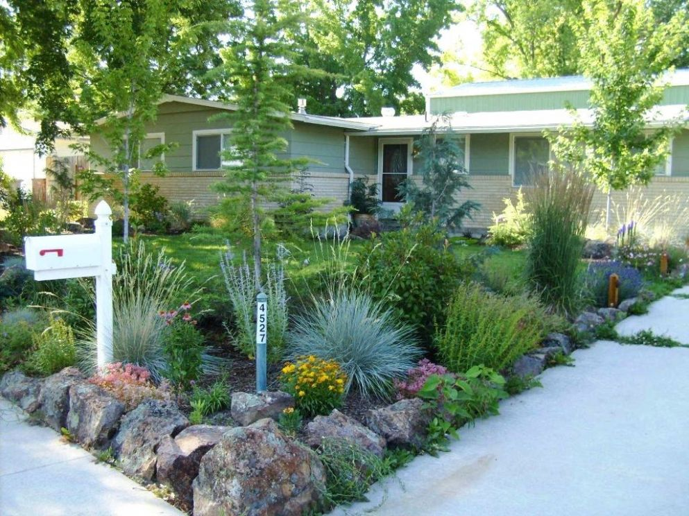 Landscaping Ideas For Front Yard Colorado Xeriscape On Pinterest ..