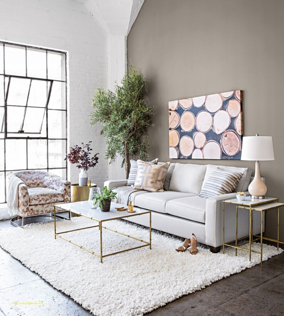 Lovely Apartment Living Room Decorating Ideas On A Budget Small ..