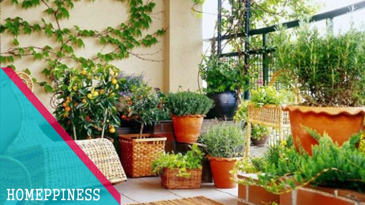 MUST WATCH !!! 10+ Cheap Small Balcony Garden Ideas With Vegetables &  Flowers