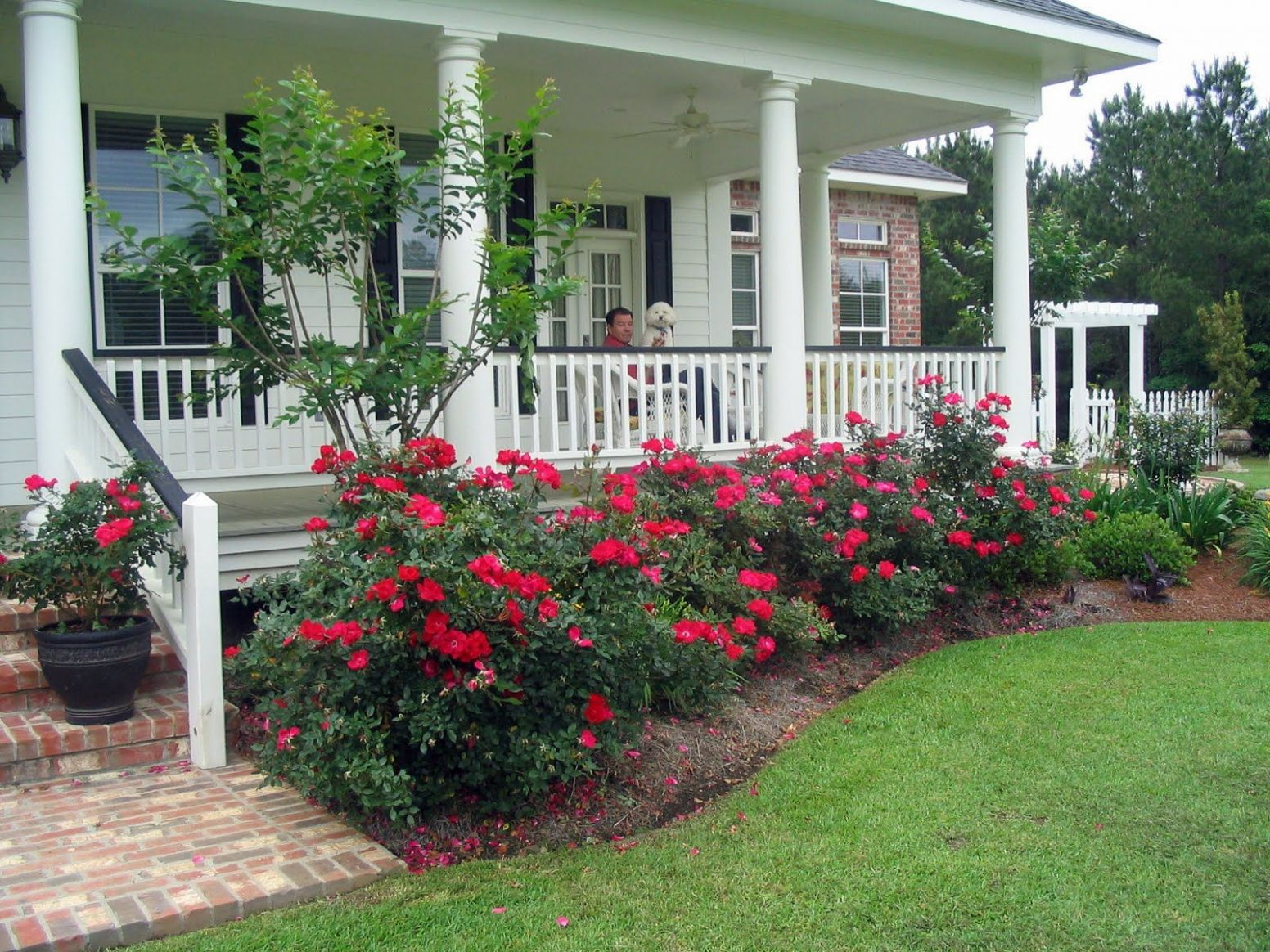 My Life on the Front Porch (With images) | Porch landscaping ...