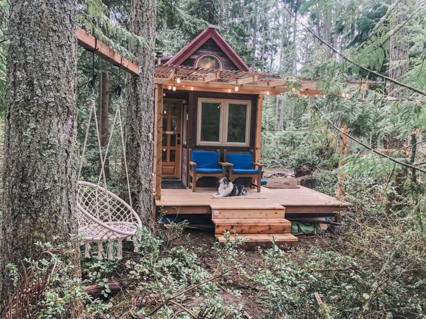 My New Tiny House Porch was Built for $10,10 in a Wooded Oasis