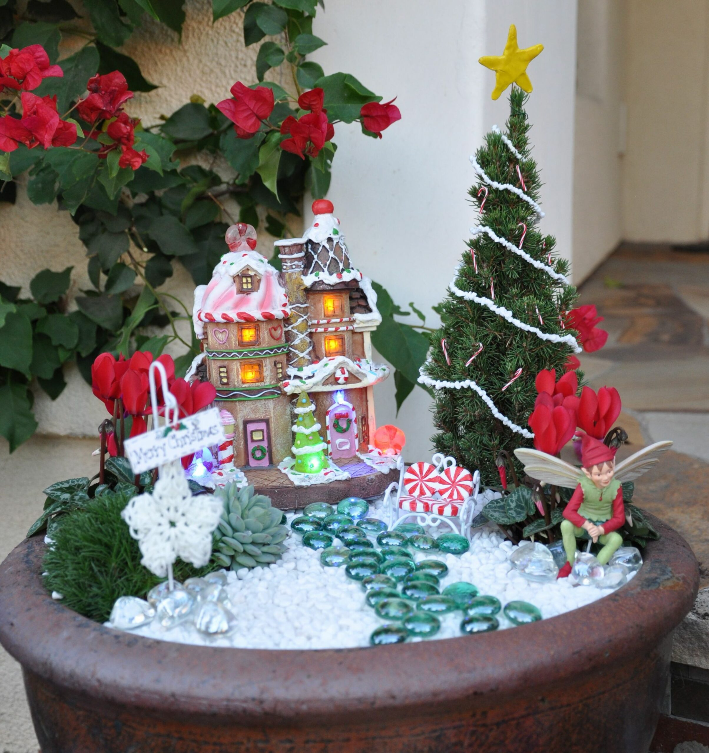 Natalie's Christmas fairy garden. I am so proud of my niece and ...