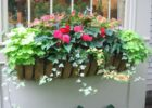 one of my summer window boxes | Window box flowers, Flower boxes ...