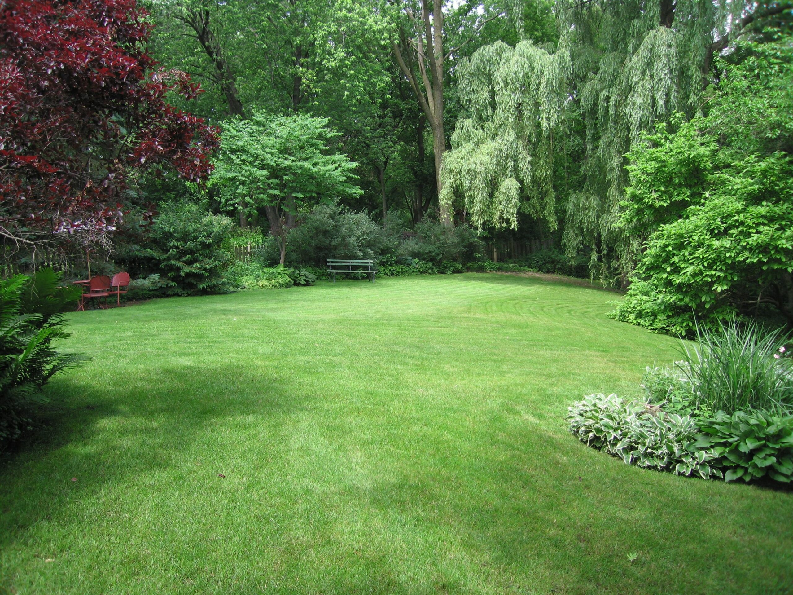 Our yard has an amazing open grass space surrounded by the 8 ft ..