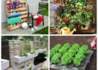 Pallets Garden Ideas | Homsgarden
