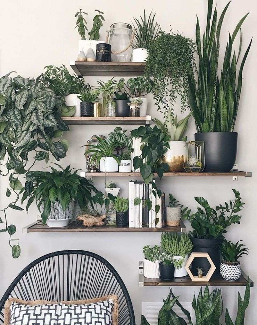 Perfect apartment decorating ideas on pinterest only in shopy home ...