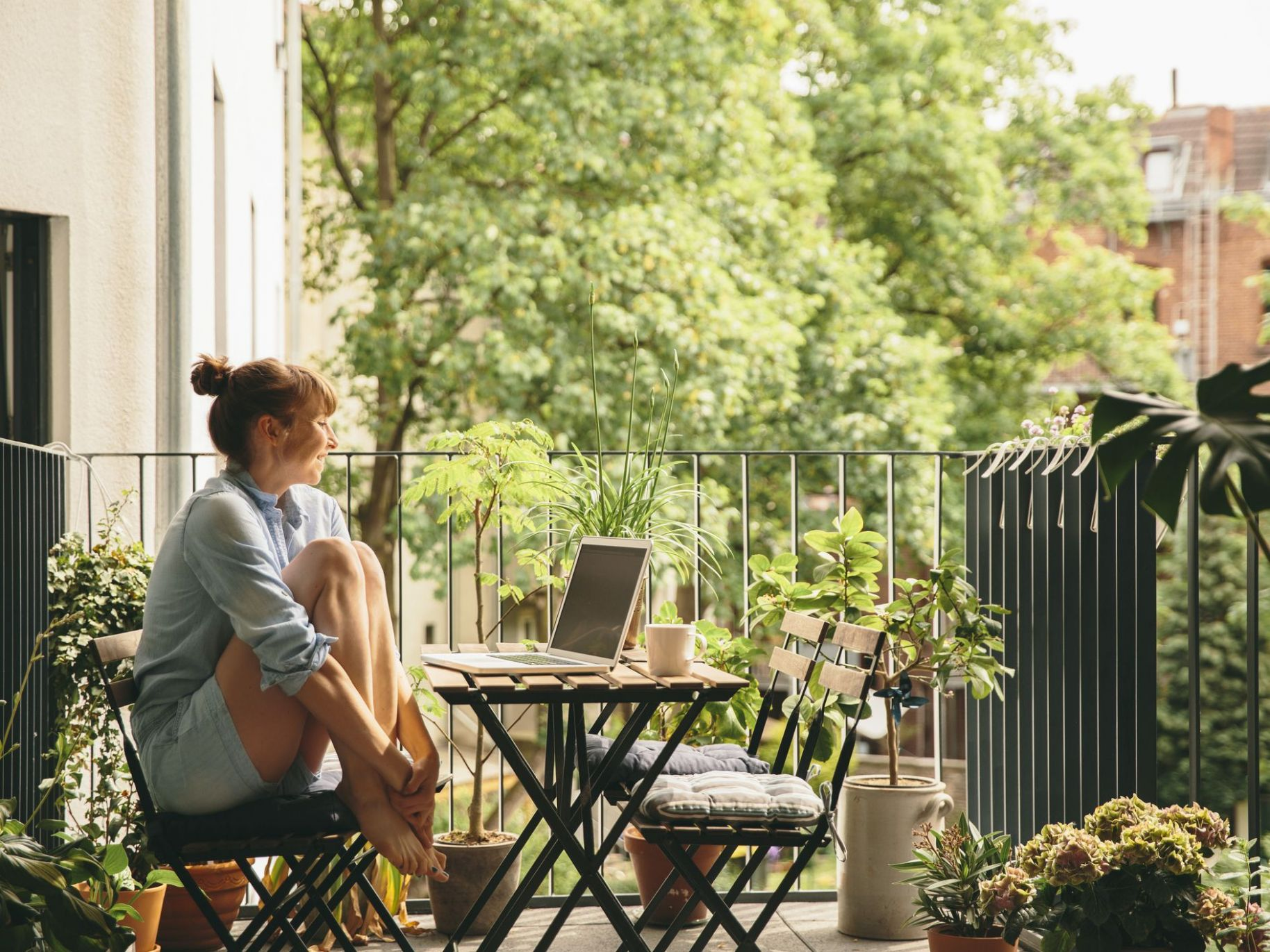 Questions to Ask Before Starting a Garden Balcony - balcony tree ideas
