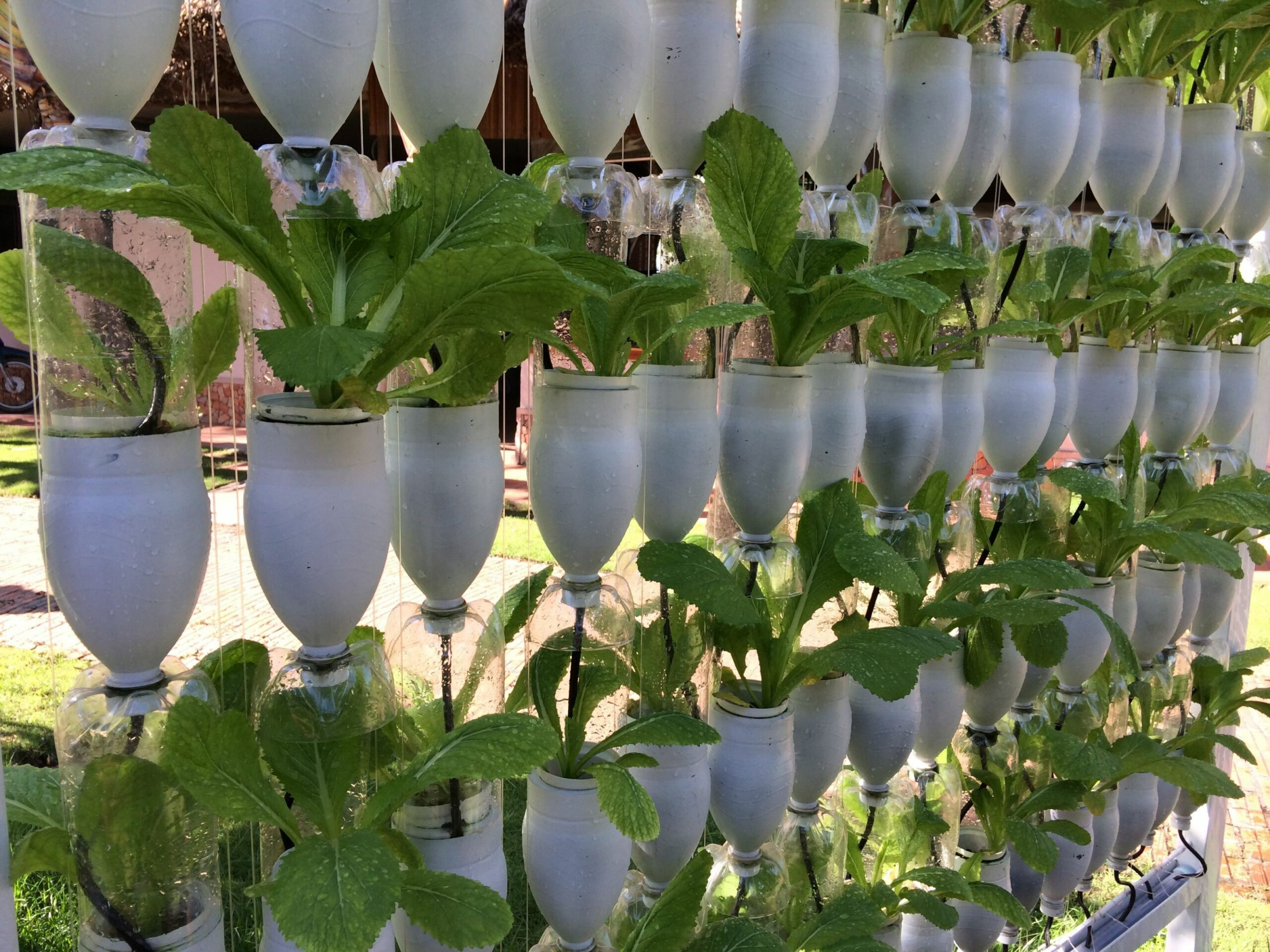 Recycled Plastic Bottles Gardening Ideas | Recycled garden ..