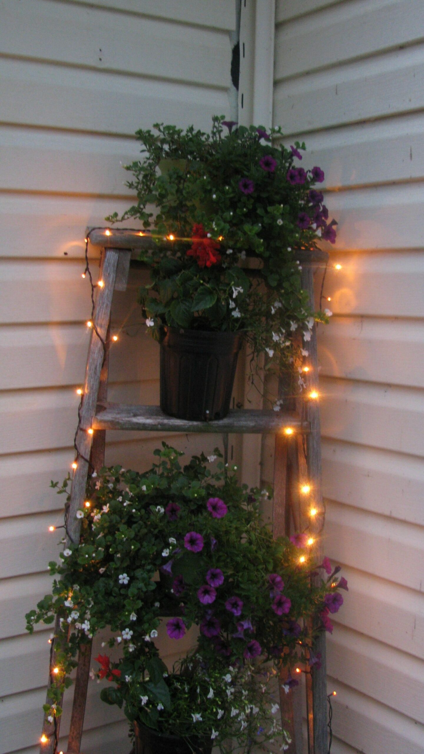 rustic ladder and fairy lights   Front porch decorating, Summer ..