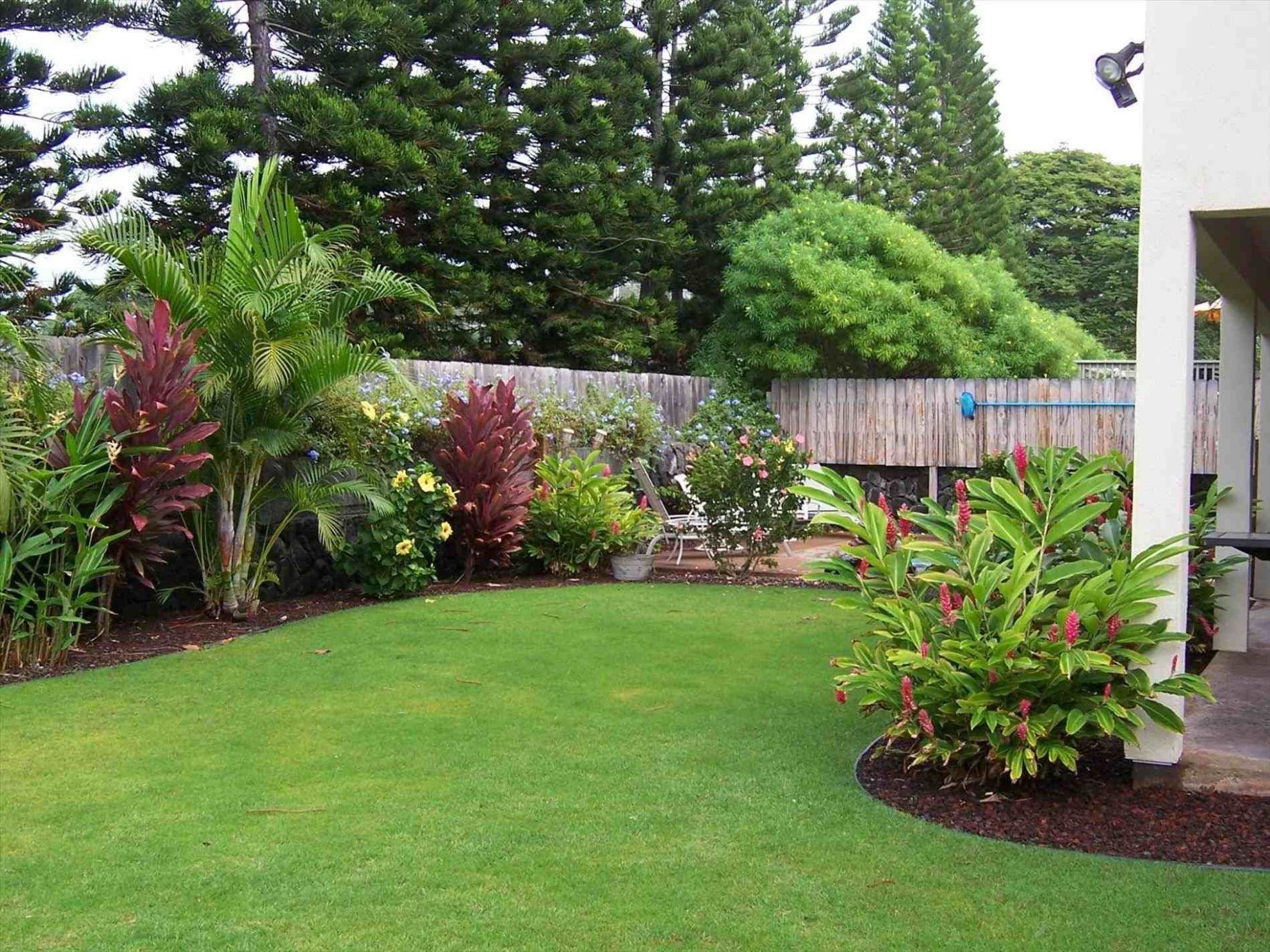 Small Backyard Landscaping Ideas For Privacy   Florida landscaping ...