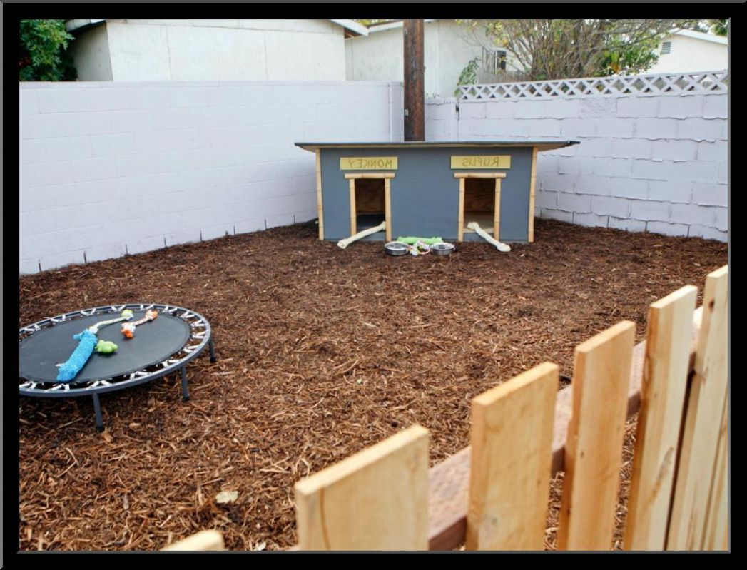 Small Backyard Landscaping Ideas With Dogs – thorplc.com ...