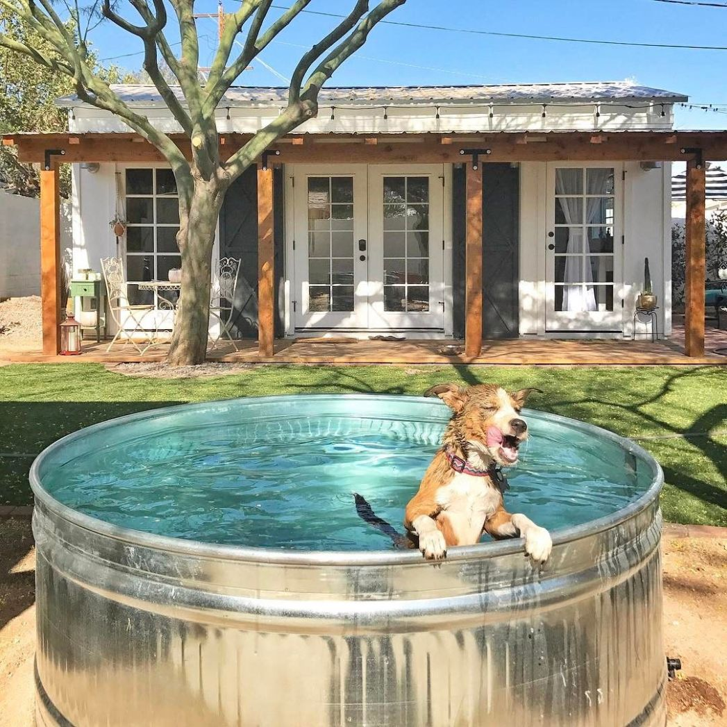 Stock Tank Pools Are Your New BFF This Summer (With images ..