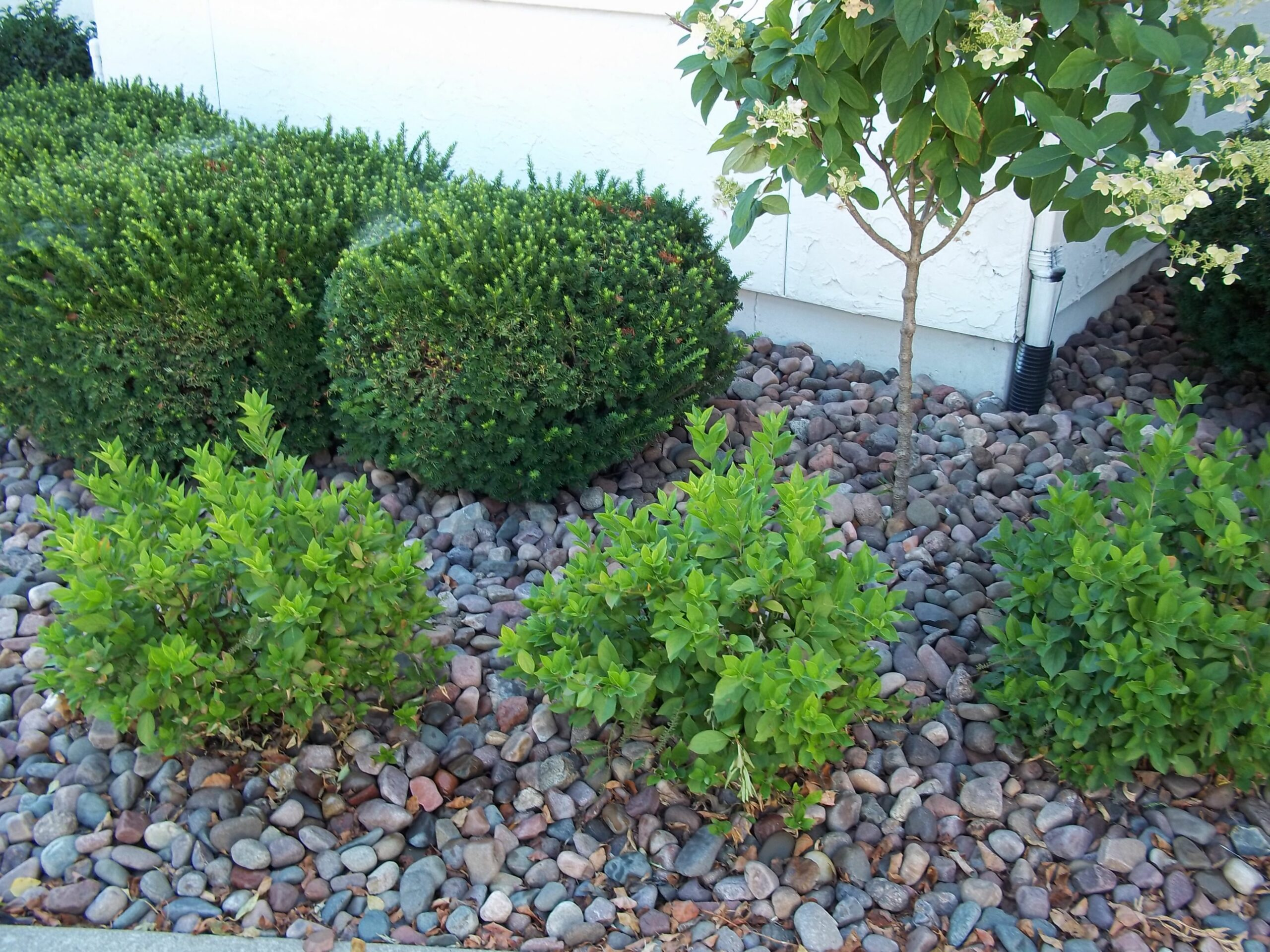 Stone Rocks Landscape Patio Landscaping And Stones Delivered ...