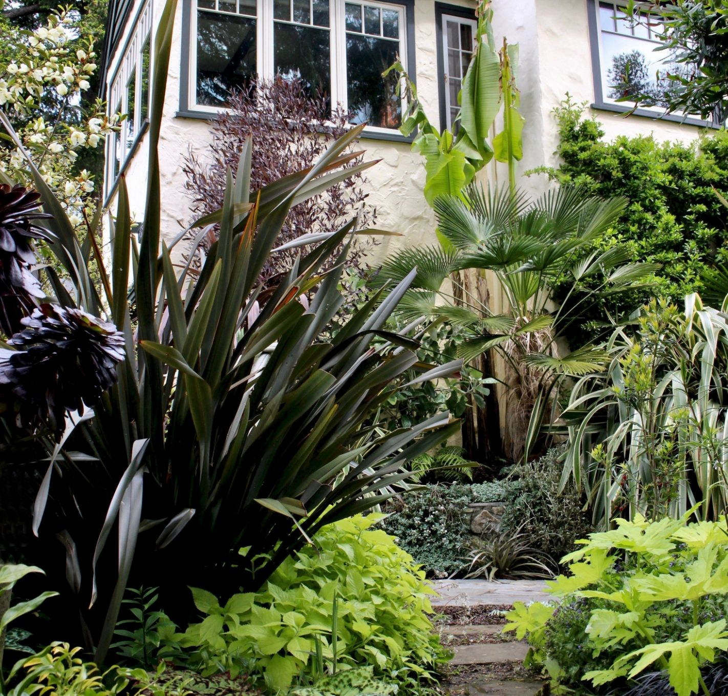 The New Canadian Garden: Tropical Plants in British Columbia ...
