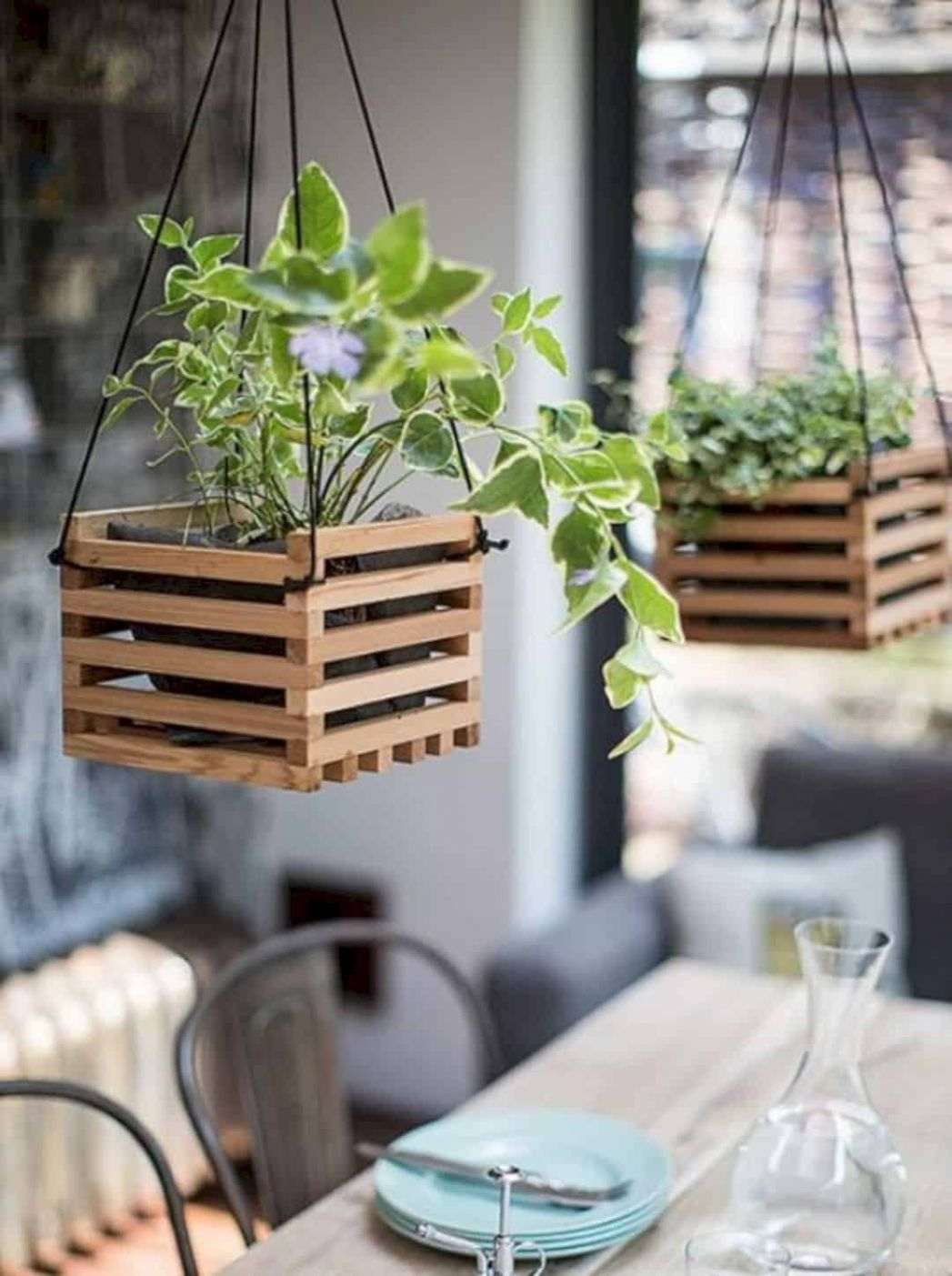 Unique and Creative Hanging Plant Decoration for Home - The ...