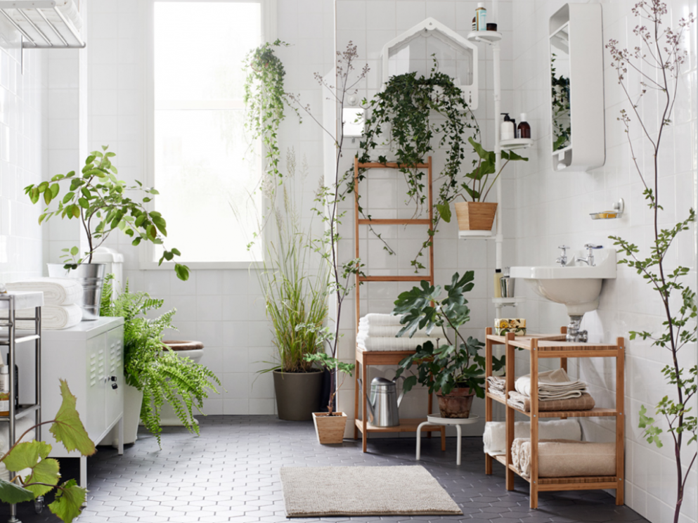 Using Plants As Décor In The Bathroom – www.nicespace