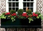 Window Boxes Ideas for Decoration Yours Home | Window box plants ...