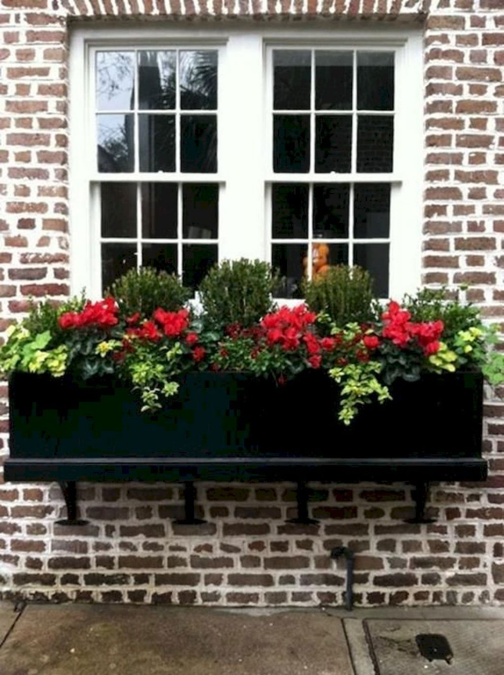 Window Boxes Ideas for Decoration Yours Home | Window box plants ..