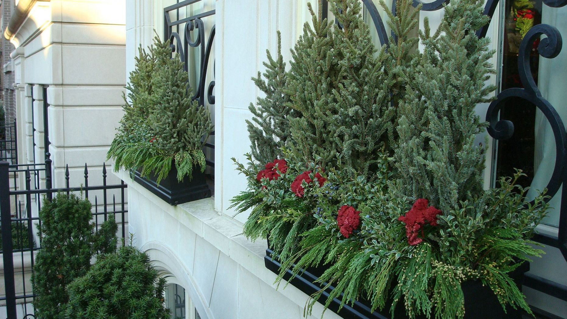 Winter/Holiday Window Boxes (With images) | Outdoor flower boxes ...