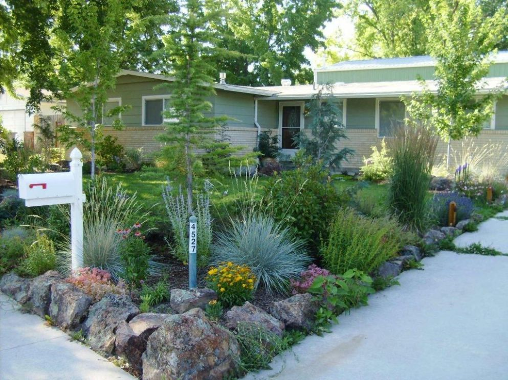 xeriscape and sustainable gardening, have less lawn but a lot of ..